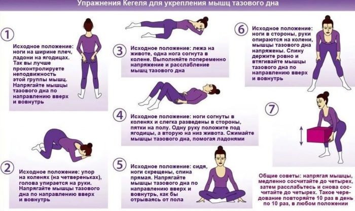 Гимнастика Кегеля для ЛК мышцы женщин